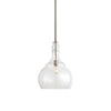 Ilona 1 Light Seeded Glass Teardrop Pendant