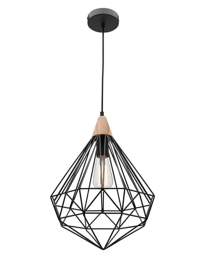 Raglan Black Wire Pendant Light