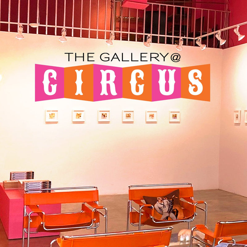 The Gallery @ Circus features the best of LGBT Artists.