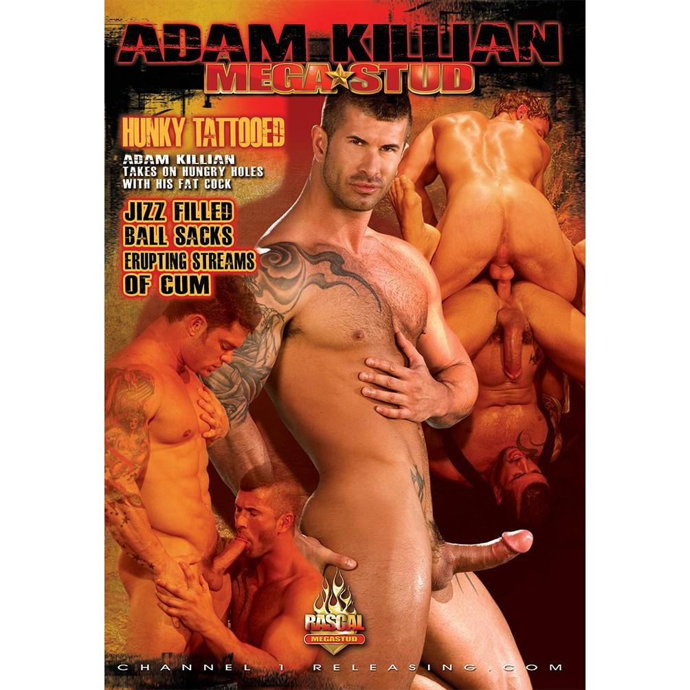 Adam Killian Megastud