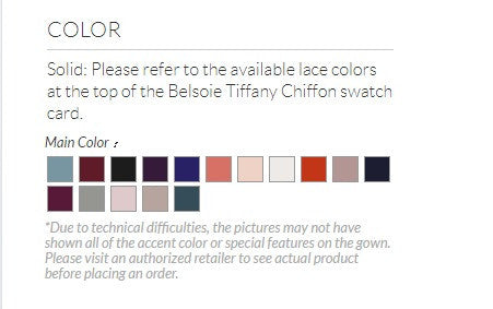Belsoie Tiffany Chiffon V-Neck A-Line with Lace  - Available Long or Short - Several Colors - Sizes 00-34 - In Store ONLY