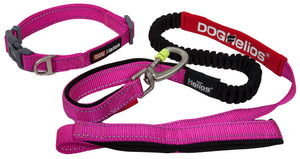 Dog Helios ® 'Neo-Indestructible' Embroidered Thick Durable Pet Dog Leash