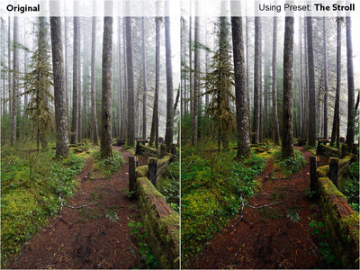 Pacific Northwest Preset Pack