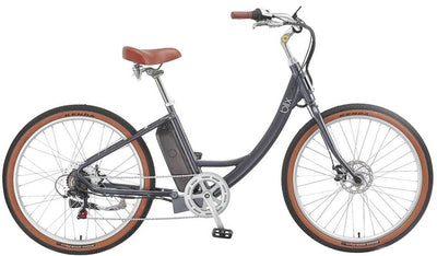 Sol Electric Cruiser Bike