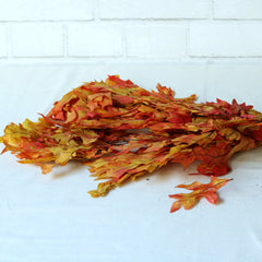 Preserved Yellow + Orange Fall Leaves