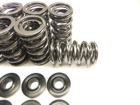 "Brian Tooley Racing .660"" Lift Platinum Spring Kit With Steel Retainers SK001"