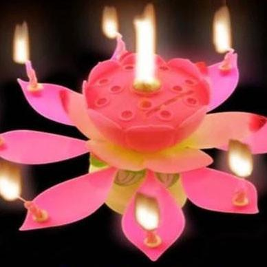 Musical Flower Candle For Birthday Cake - ExportLeftovers.com