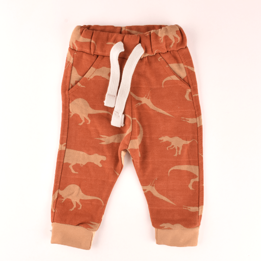 ZR Kid's Dinosaur Printed Terry Jogger Pants Boy's Trousers First Choice 3-6 Months