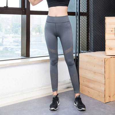 Women's Sport High Elastic Quick Drying Leggings