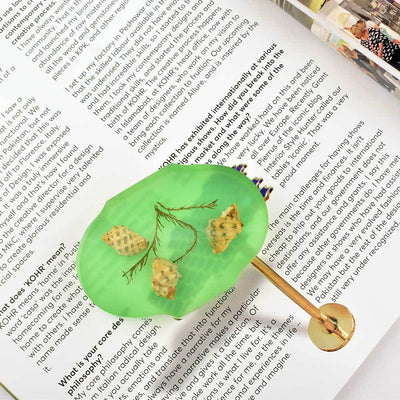 Oval Shape Classic Insect Design Paper Weight Paper Weight HDY