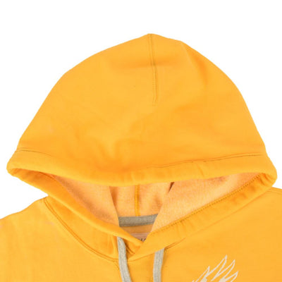 AE Karlstad Attraction Pullover Hoodie