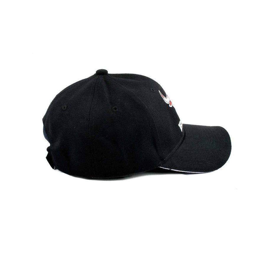 Chicago Bull Signature P Cap