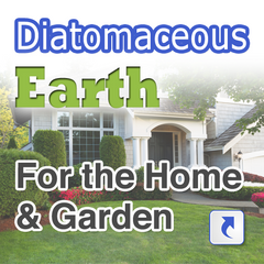 Food Grade Diatomaceous Earth In Canada