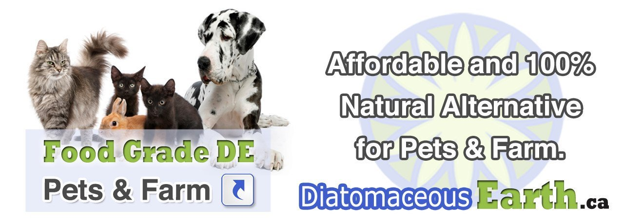 Diatomaceous Earth for pet health and feed additive