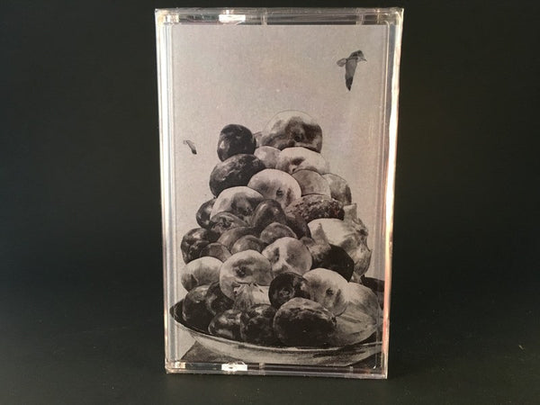 HOP ALONG - painted shut - CASSETTE TAPE indie rock