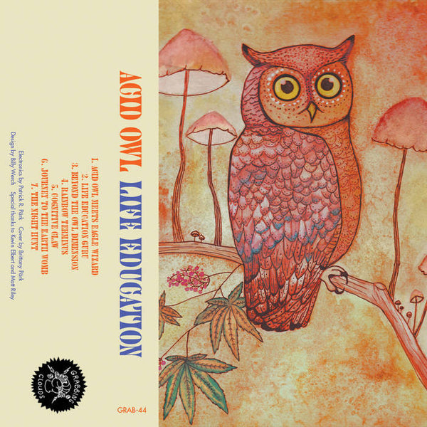 LIFE EDUCATION - acid owl - BRAND NEW CASSETTE TAPE - grabbing clouds