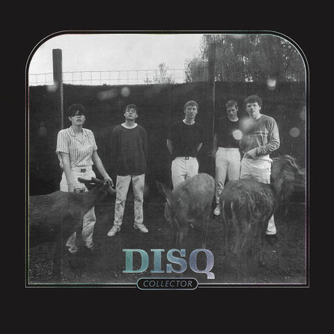DISQ - collector - BRAND NEW CASSETTE TAPE