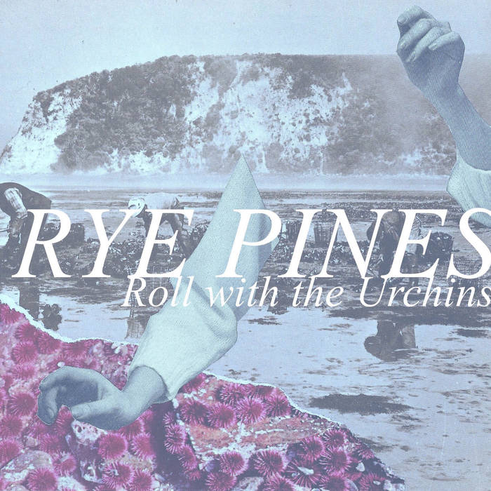 RYE PINES - roll with the urchins - BRAND NEW CASSETTE TAPE