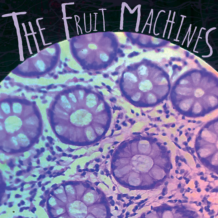 THE FRUIT MACHINES - s/t - BRAND NEW CASSETTE TAPE