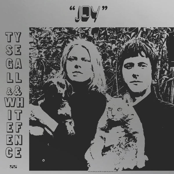TY SEGALL & WHITE FENCE - joy - BRAND NEW CASSETTE TAPE