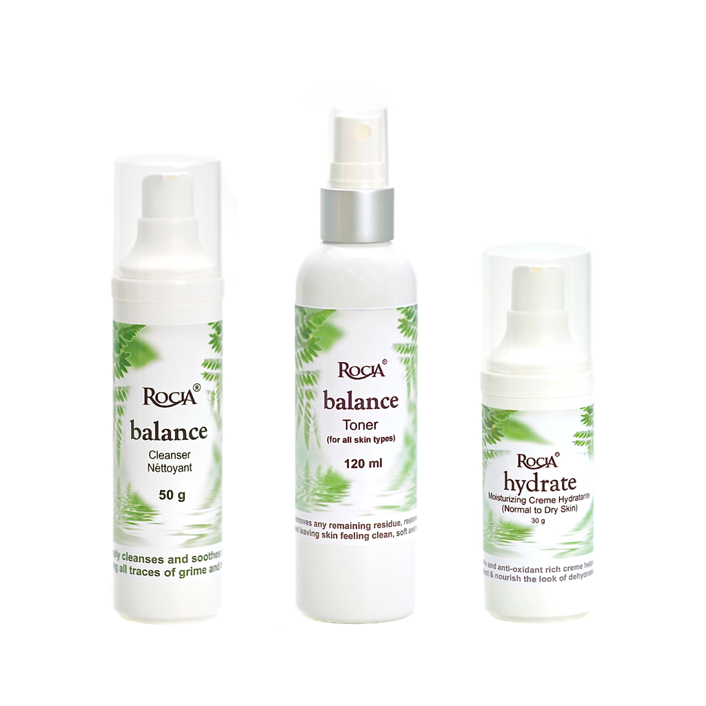 normal-dry skincare system by rocia naturals