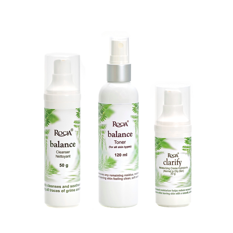 basic normal-oily <br>skincare system