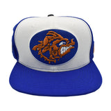 BLUE/WHAT WATER BOY SNAPBACK