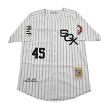 Baltimore Black Sox Negro League Jersey