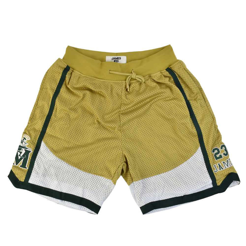 Lebron James Fighting Irish Altenate Basketball Shorts