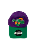 Space Jam Purple Dad Hat