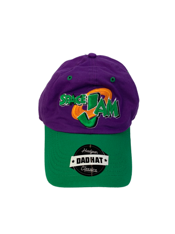 Space Jam Purple Dad Hat - shopallstarsports.com