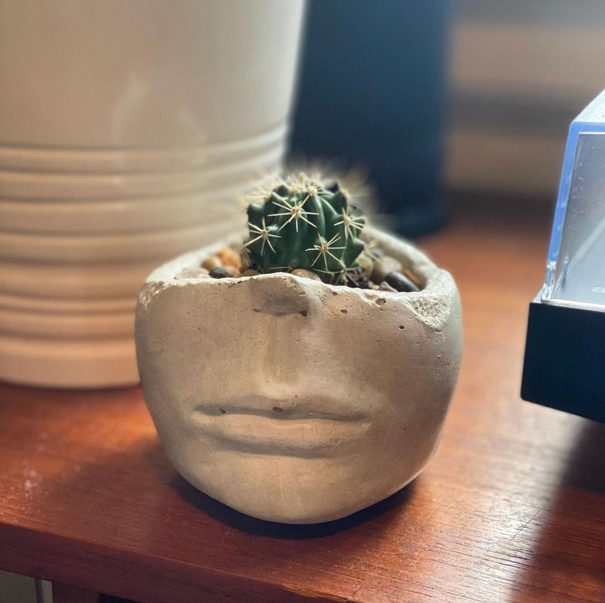 ForgottenProperty - Concrete Face Planter - home - ForgottenProperty - MOD&SOUL