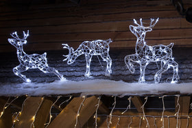 Indoor & Outdoor Christmas Displays