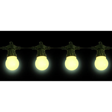 20 Low Voltage LED Warm White Festoon Party Lights with Black cable