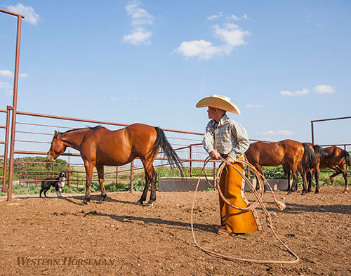 Western Horseman Images by Ross Hecox