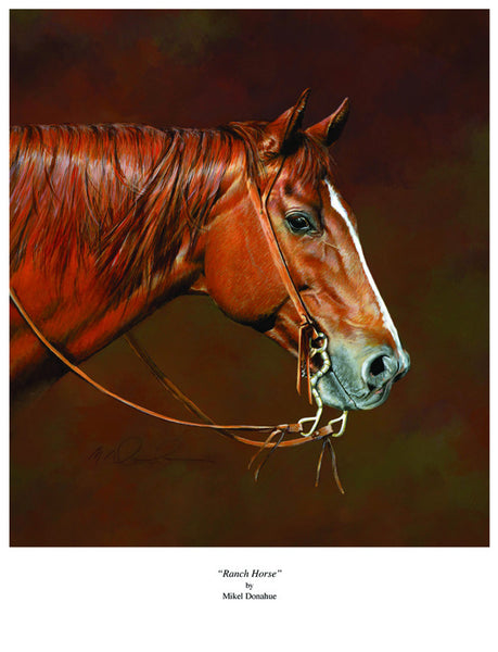 Ranch Horse by Mikel Donahue