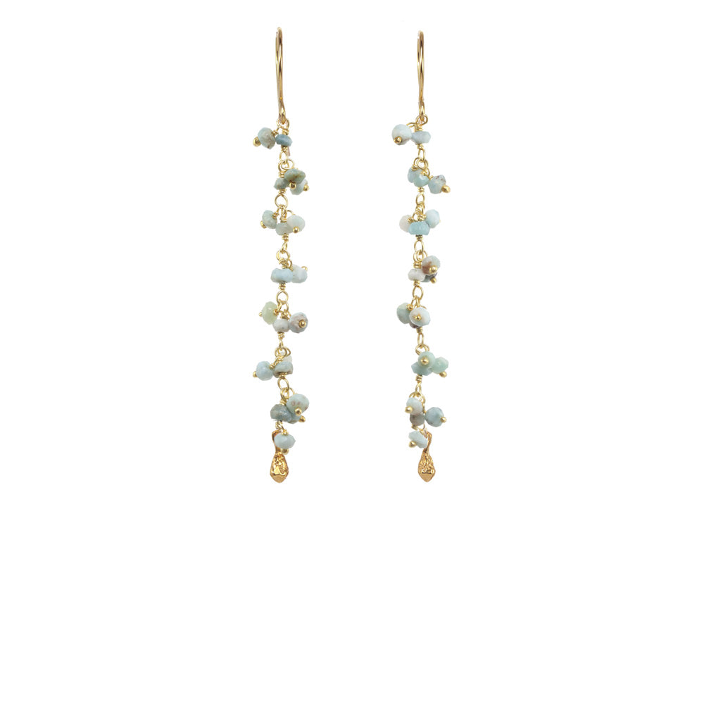 Long Gemstone Dangle with Pod Earrings