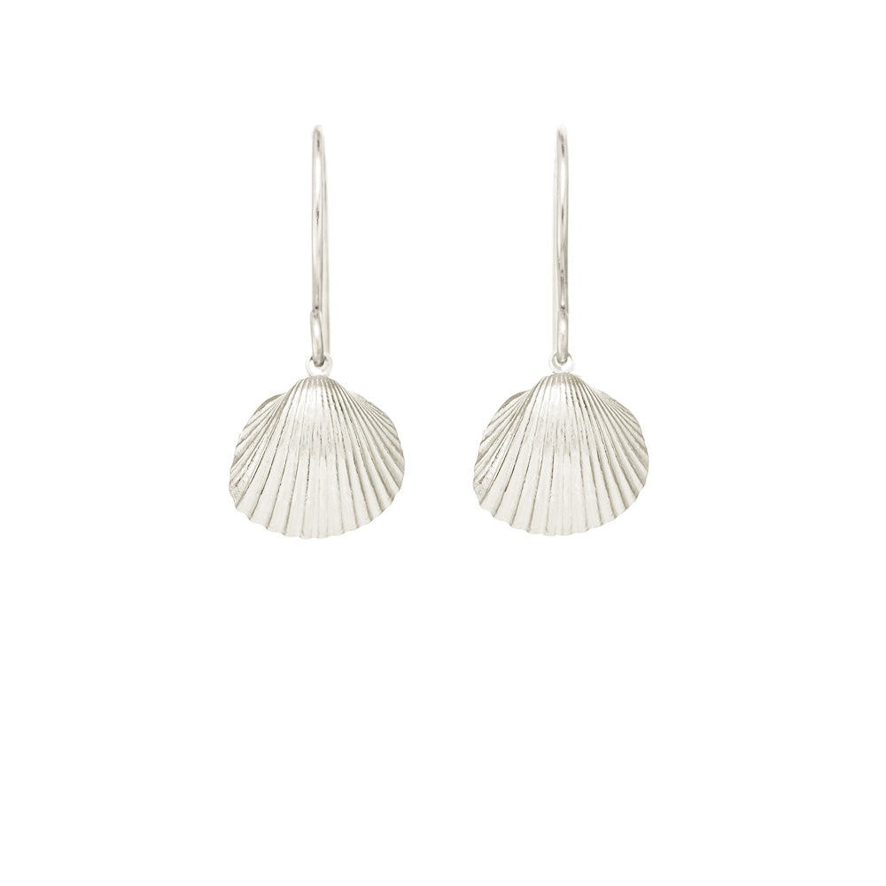 Small Sun Shell Earrings