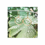 Branch Circle With Topaz Earrings