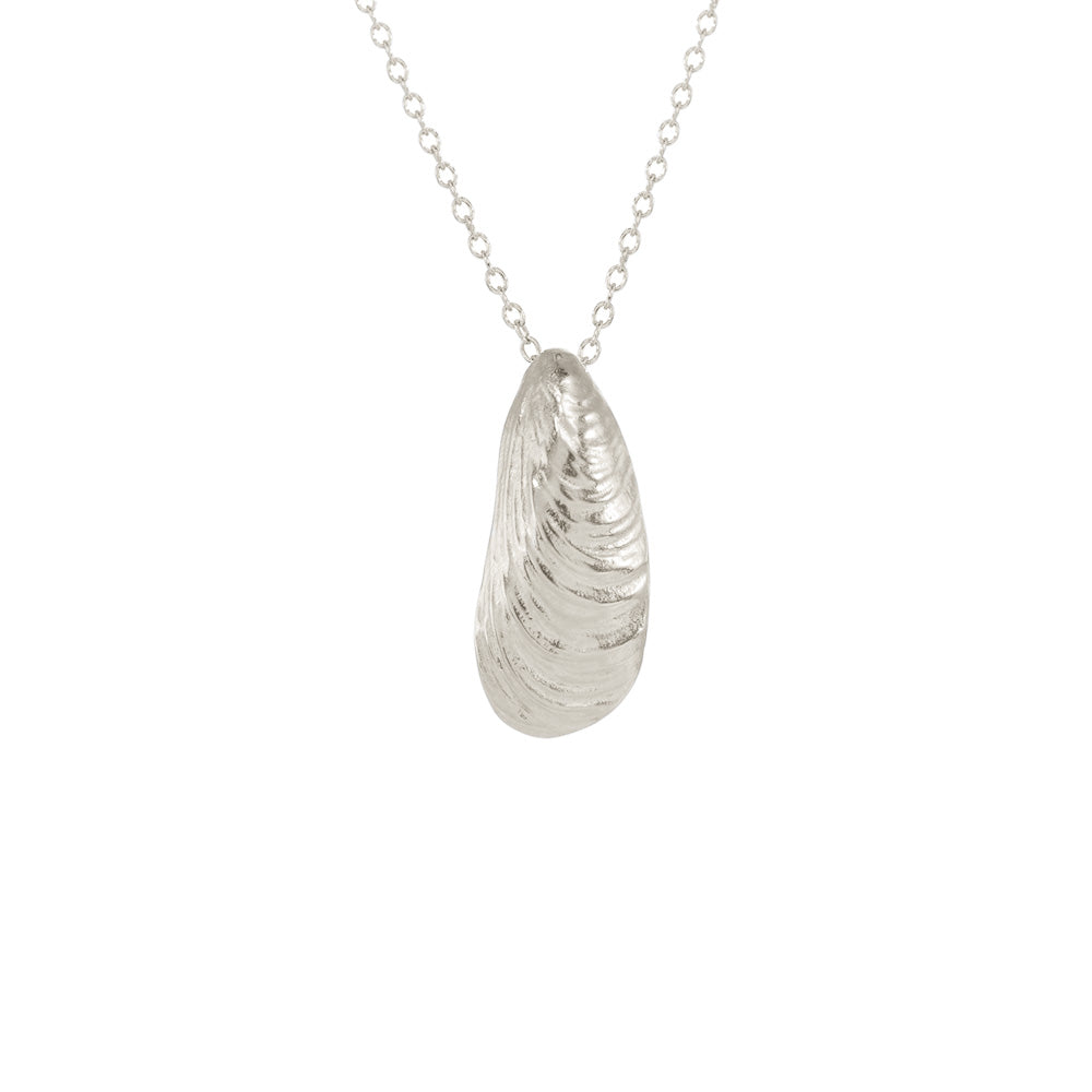 Small Serenity Shell Necklace