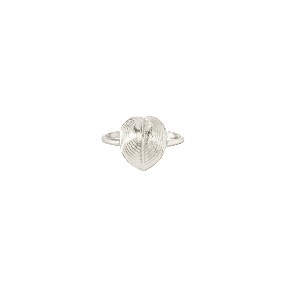 Small Heart Shell Ring