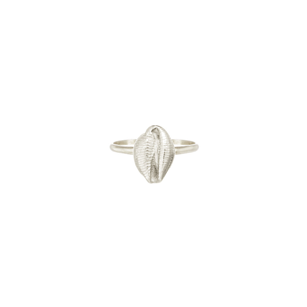 Kissing Shell Ring