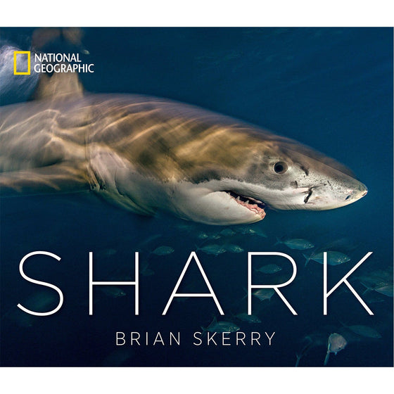 Book - Sharks: A National Geographic Book By Brian Skerry