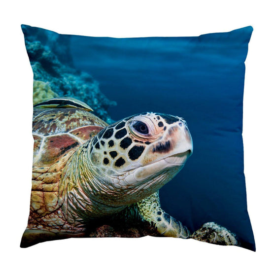 Pillow - PADI Turtle Pillow