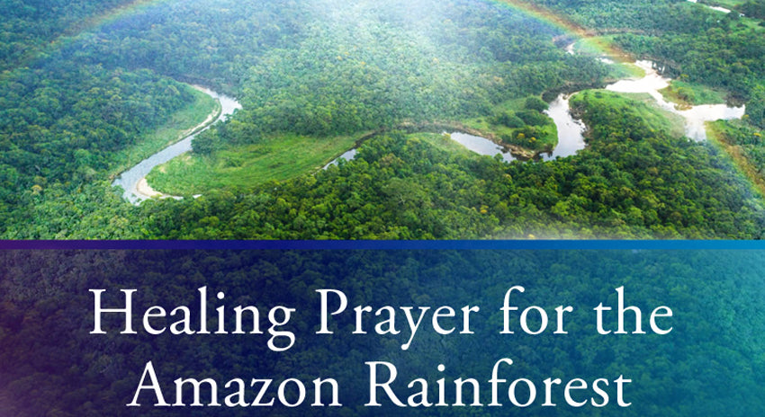 Healing Prayer for the Amazon Rainforest from Dr. Joseph Michael Levry