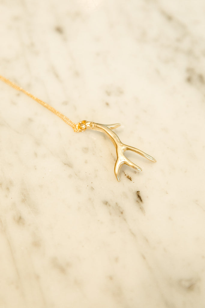 Long Antler Pendant Necklace