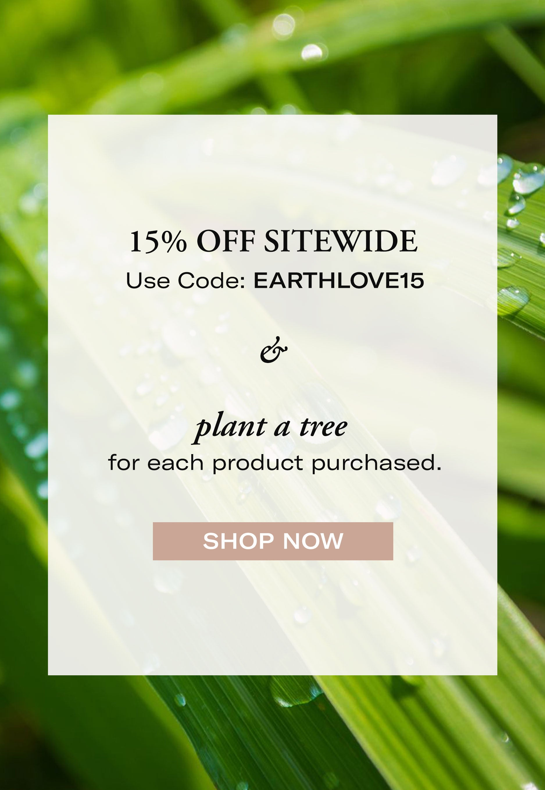 15% Off Sitewide Sale