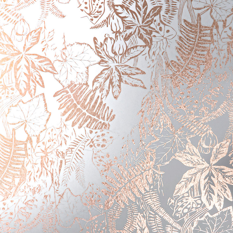 Hothouse copper rose / white