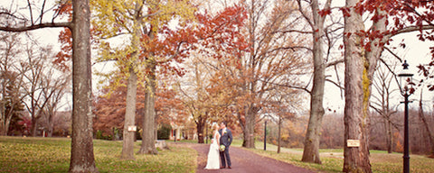 Autumn Trees Wedding Day Morning