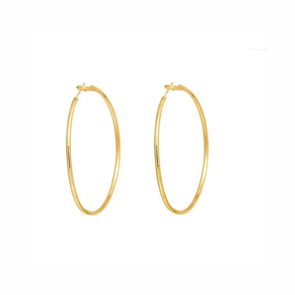 Pink Hippo Store Hoop Statement earrings